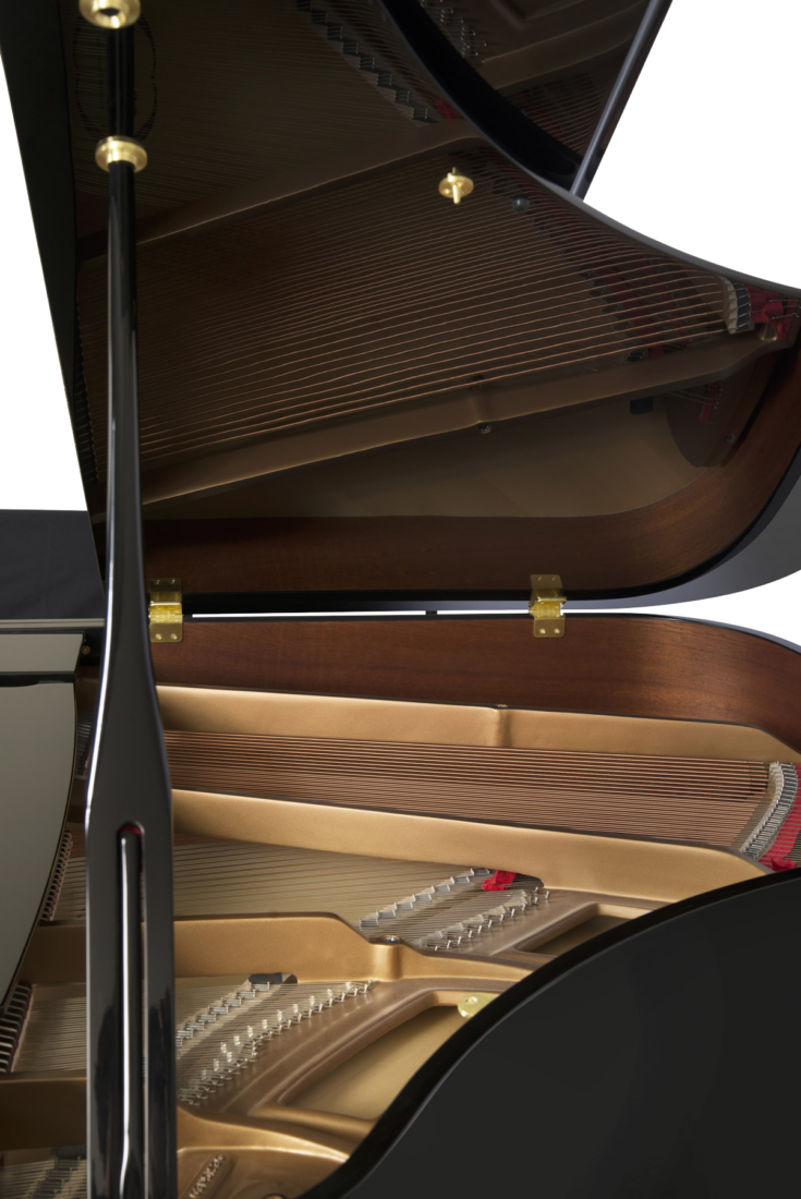 piano-cola-essex-egp155-nuevo-negro-tapa