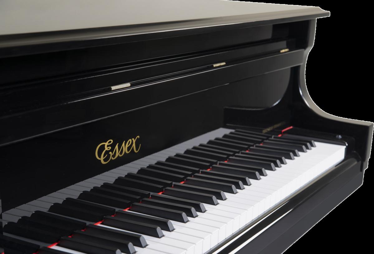piano-cola-essex-egp155-nuevo-negro-teclado