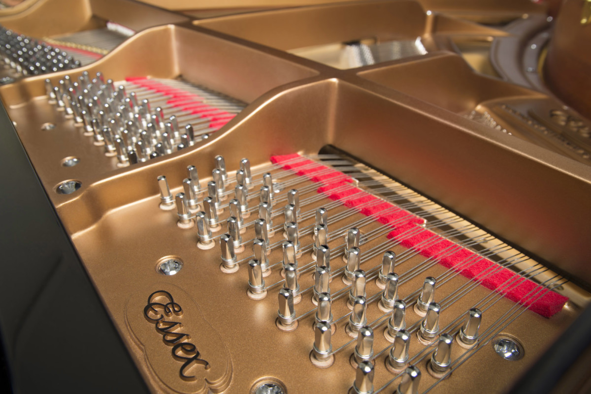 piano-cola-essex-egp173-nuevo-negro-clavijas