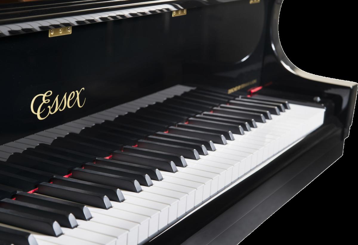 piano-cola-essex-egp173-nuevo-negro-teclado