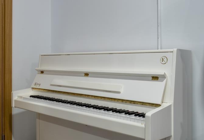 KÖNIG-K109-118411 vista general piano
