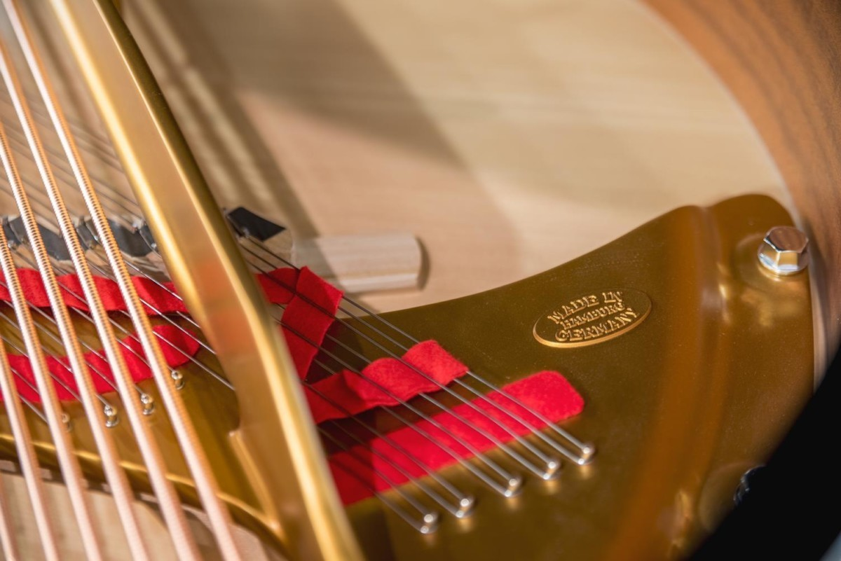 Steinway & Sons Spirio O180 #608031 tabla armónica cuerdas