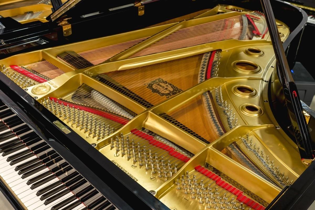 Yamaha C7 #3510313 arpa clavijero