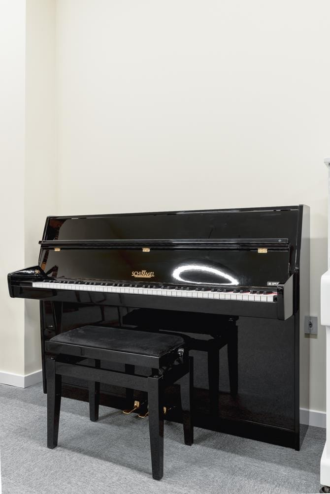 SCHIMMEL 112 #155974 vista general piano