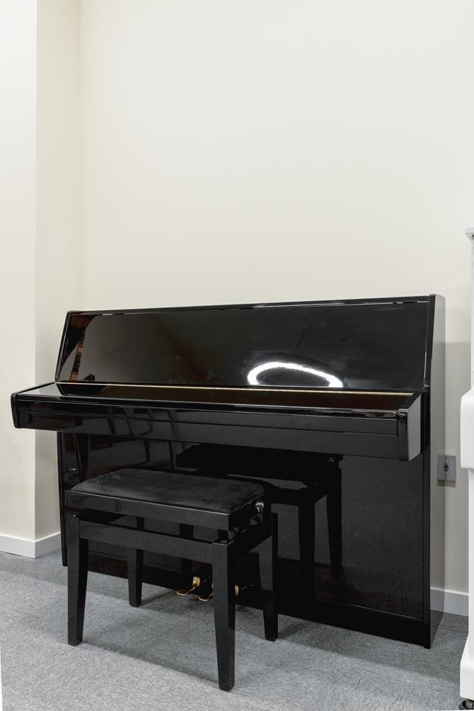 SCHIMMEL 112 #155974 vista general piano tapa cerrada