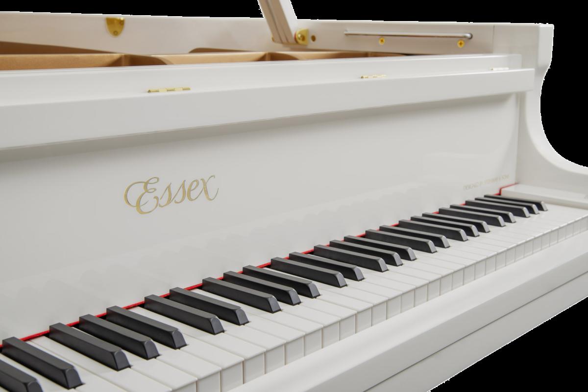piano-cola-essex-egp173-nuevo-blanco-teclado