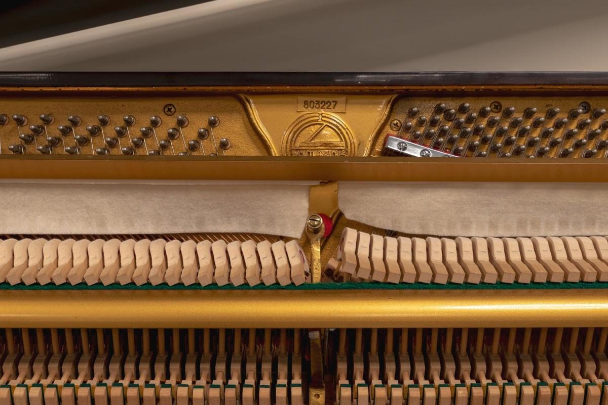 CALTHERBACH CHIPPENDALE 803227 clavijero, clavijas, sordina, mecanismo