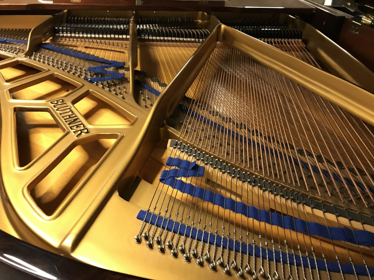 BLÜTHNER MODEL 10 140495 arpa, tabla armónica, cuerdas, puente