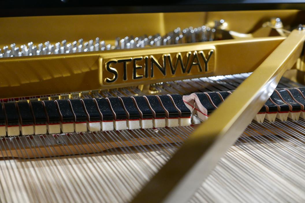 STEINWAY D274 611126 apagadores, arpa, tabla armónica, clavijas