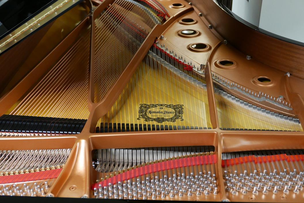 YAMAHA C7 6323760 Apagadores, clavijas, tabla armónica, cuerdas, arpa