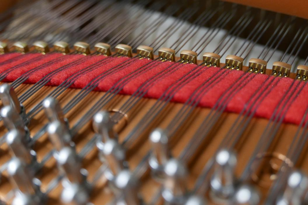 YAMAHA C7 6323760 clavijas