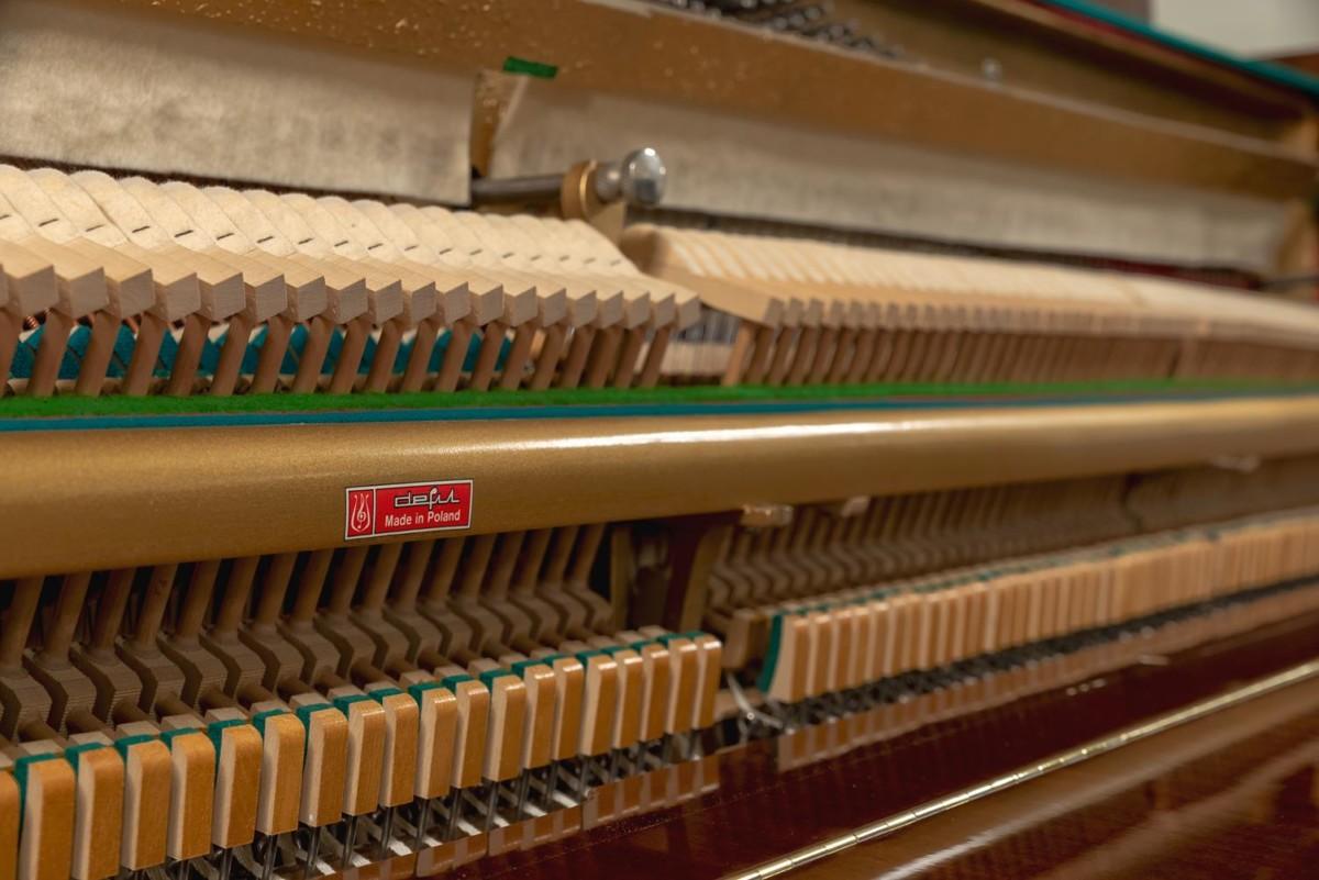 CALISIA M105 106205 Mecanismo, martillos, sordina