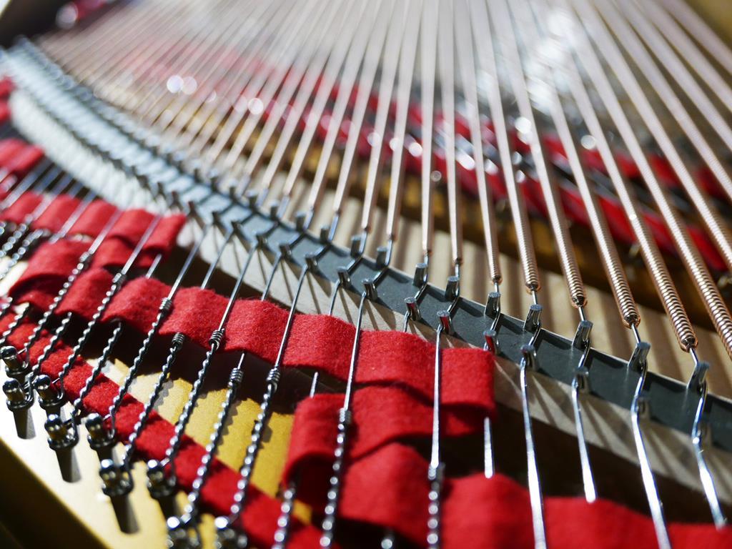 STEINWAY & SONS O180 245768 puentes, cuerdas, arpa