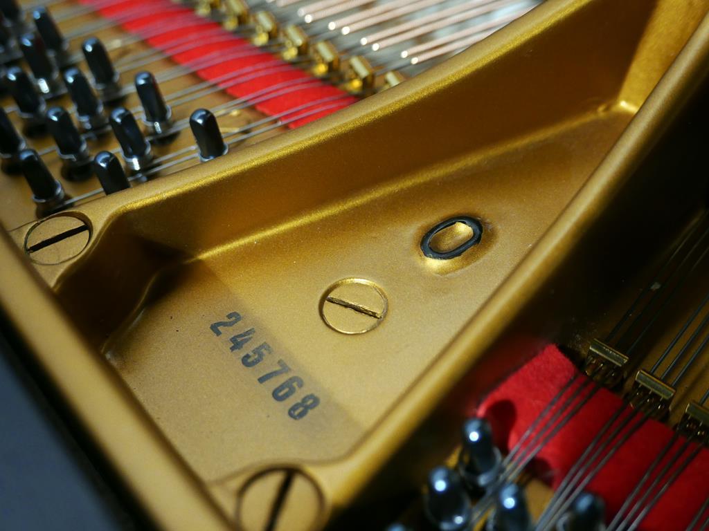 STEINWAY & SONS O180 245768 clavijero, arpa, modelo