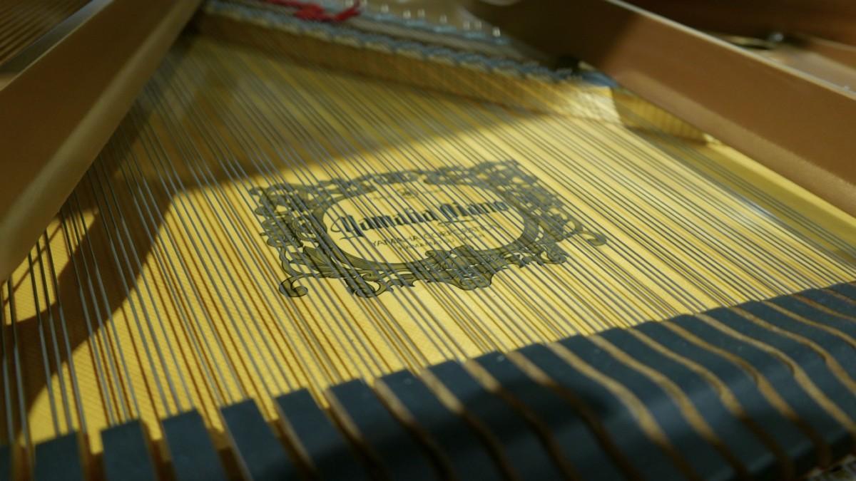 piano de cola Yamaha C6 #5605144 vista interior marca cuerdas apagadores tabla armónica