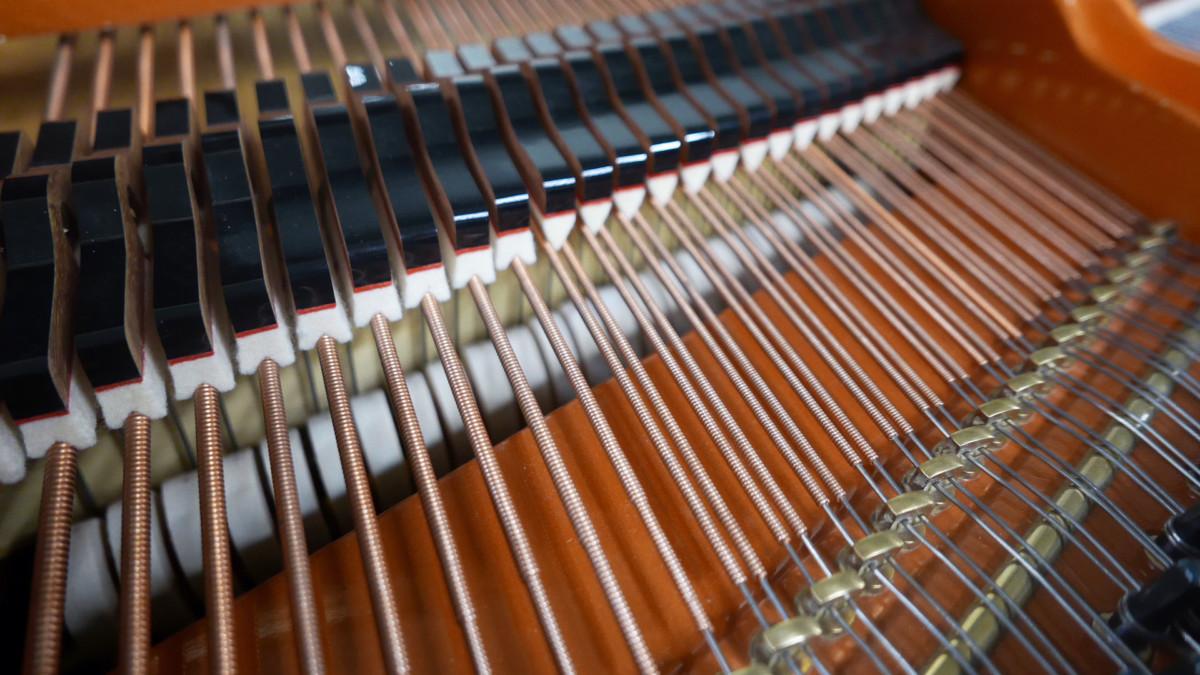 piano de cola Schimmel 174 #307484 apagadores cuerdas martillos macillos