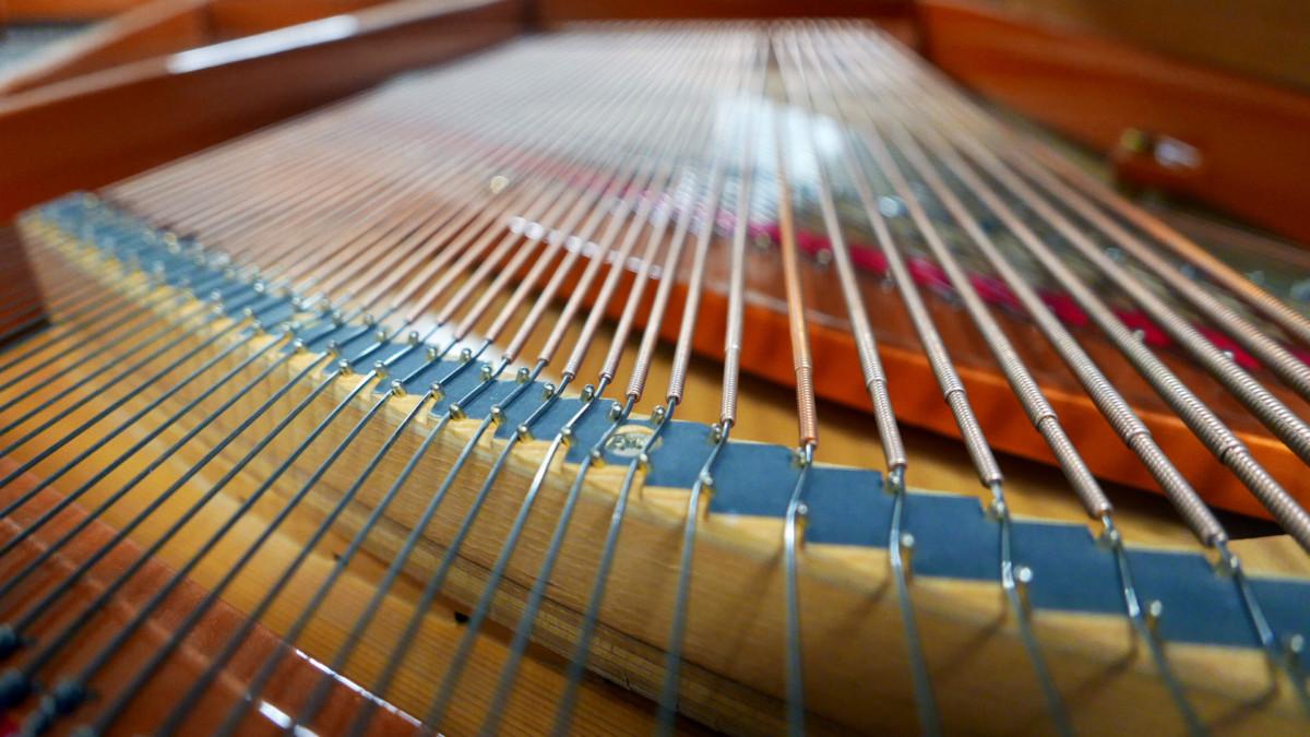 piano de cola Schimmel 174 #307484 cuerdas vista trasera interior