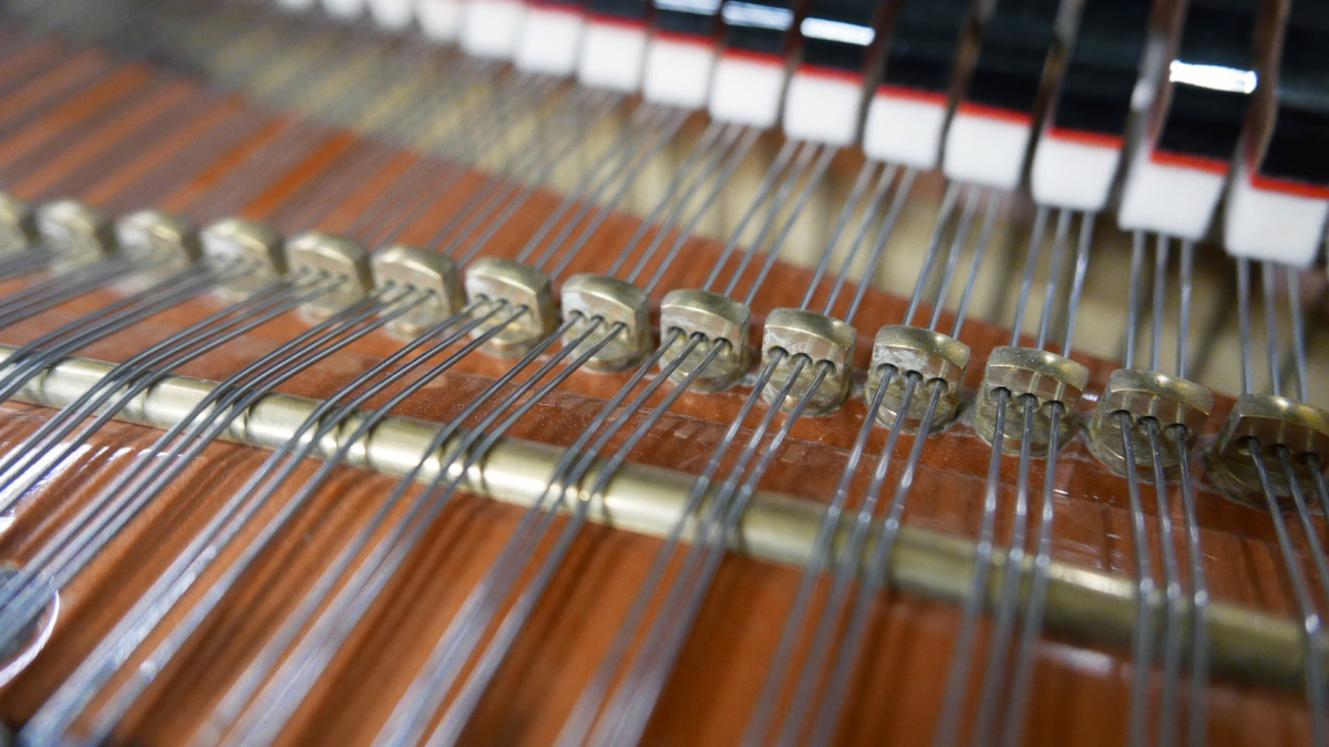 piano de cola Schimmel 174 #307484 detalle agrafes cuerdas mecanica interior