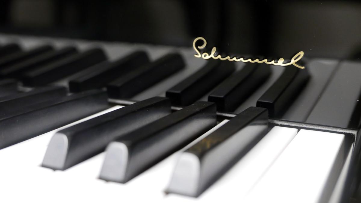 piano de cola Schimmel 174 #307484 detalle teclado teclas marca