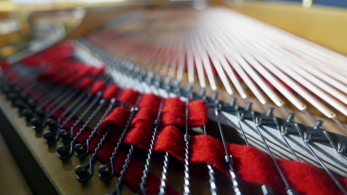 piano de cola Steinway & Sons O180 #238610 detalles cuerdas fieltros
