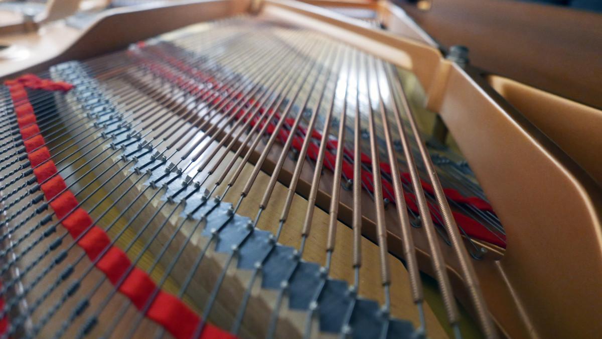 piano de cola Yamaha C3 #5972447 interior bordones cuerdas