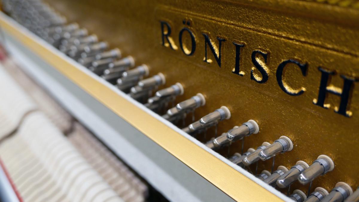 piano vertical Rönish #206292 detalle arpa interior