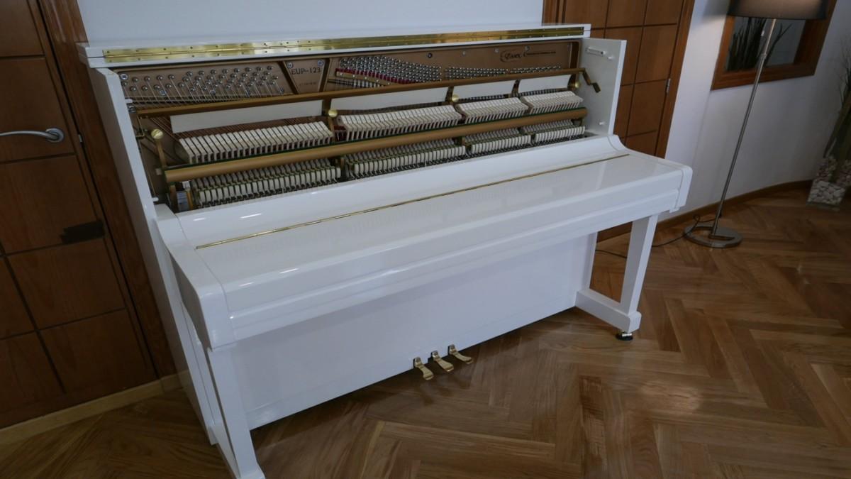 Piano-vertical-Essex-EUP123E-159785-detalle-vista-general-mecanismo
