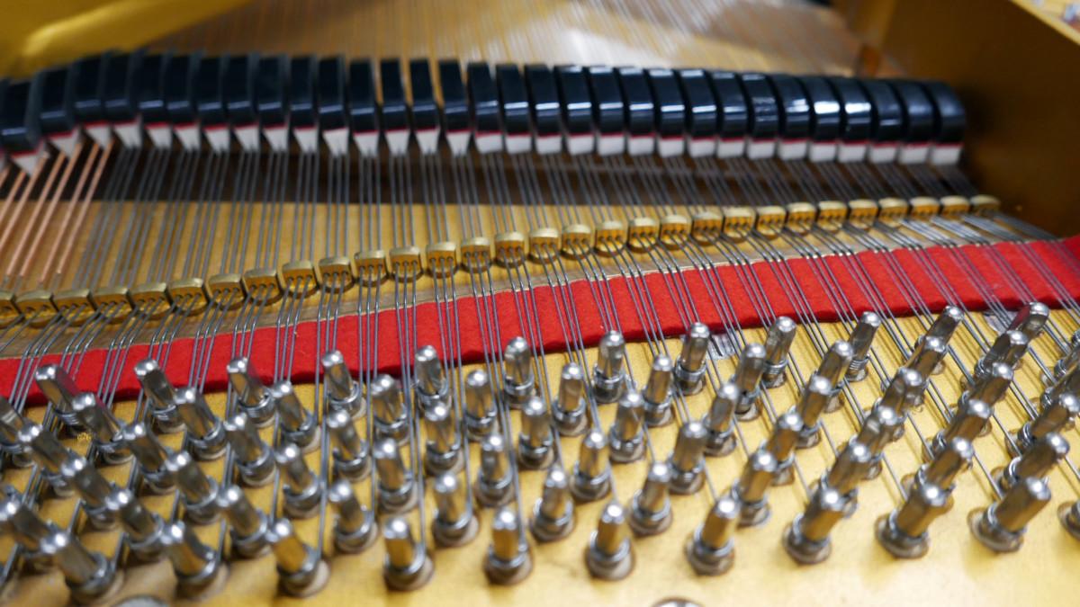 piano de cola Petrof 157 #478883 clavijero clavijas fieltros cuerdas apagadores
