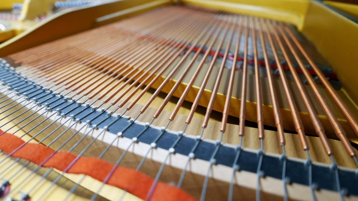 piano de cola Petrof 157 #478883 detalle cuerdas bordones mecanica interior