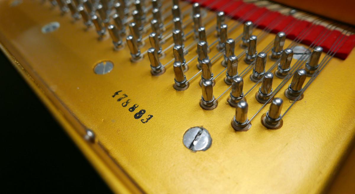 piano de cola Petrof 157 #478883 numero de serie clavijero clavijas