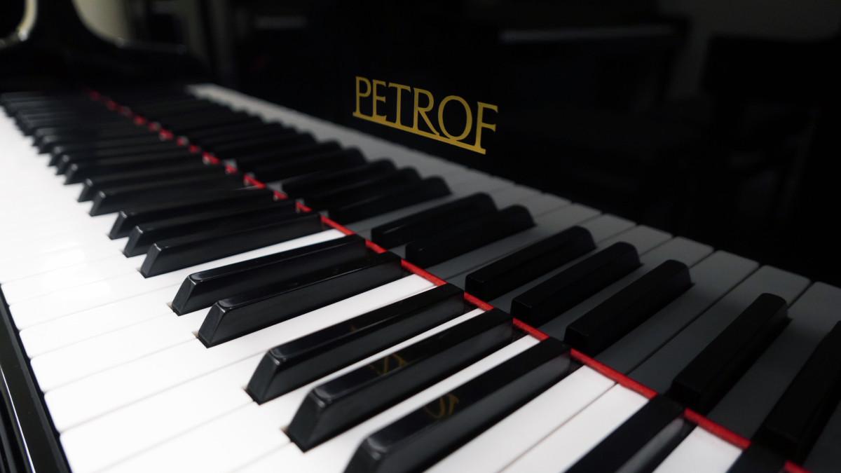 piano de cola Petrof 157 #478883 teclado teclas