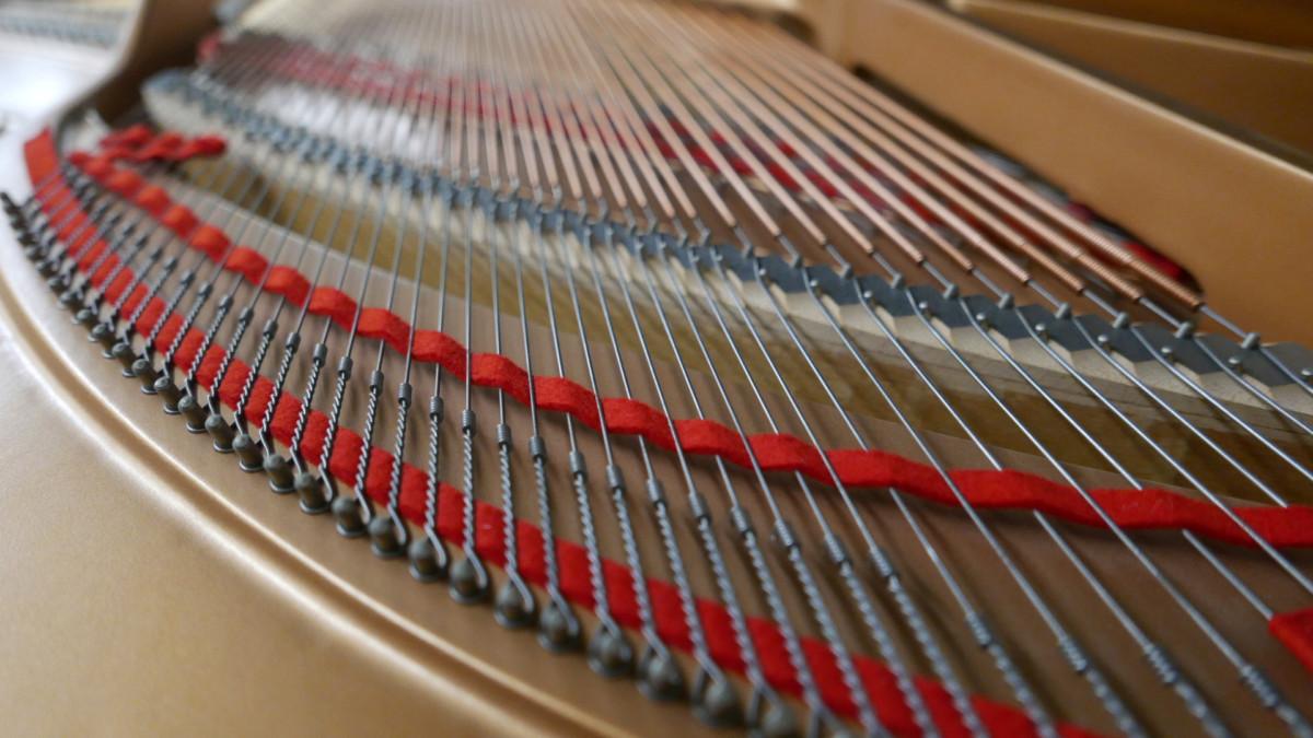 piano de cola Yamaha C5 #5449040 detalle fieltros cuerdas vista trasera