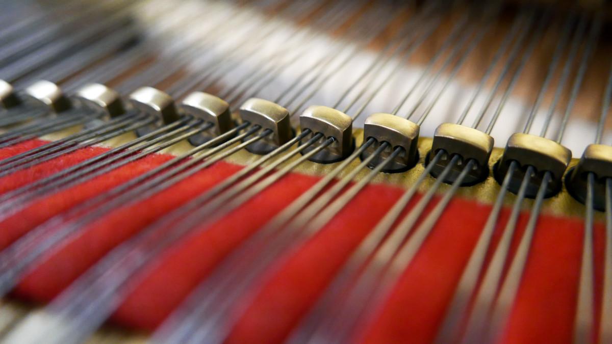 piano de cola Yamaha C7 #3040352 detalle agrafes fieltros interior