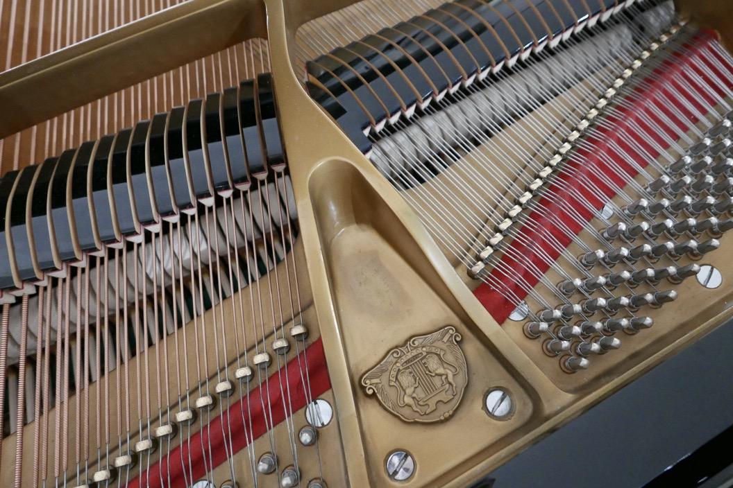 Piano_de_cola_Samick_8711217_detalle_cuerdas_apagadores_logo_clavijas_arpa_bastidor_segunda_mano