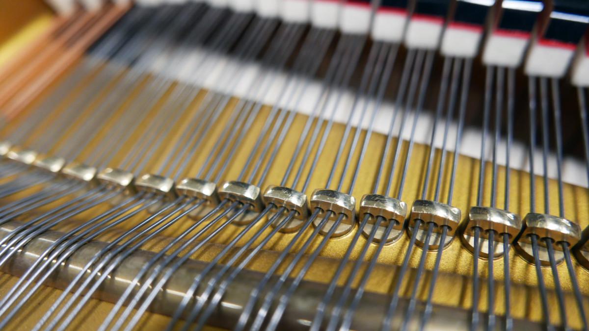 piano de cola Schimmel 150 #201910 agrafes cuerdas detalles