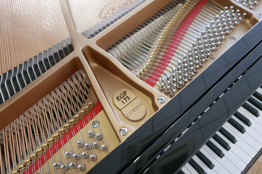 Piano_de_cola_Essex_EGP173C_176537_detalle_clavijas_cuerdas_fieltros_bastidor_modelo_numero_de_serie_teclas_tapa_segunda_mano