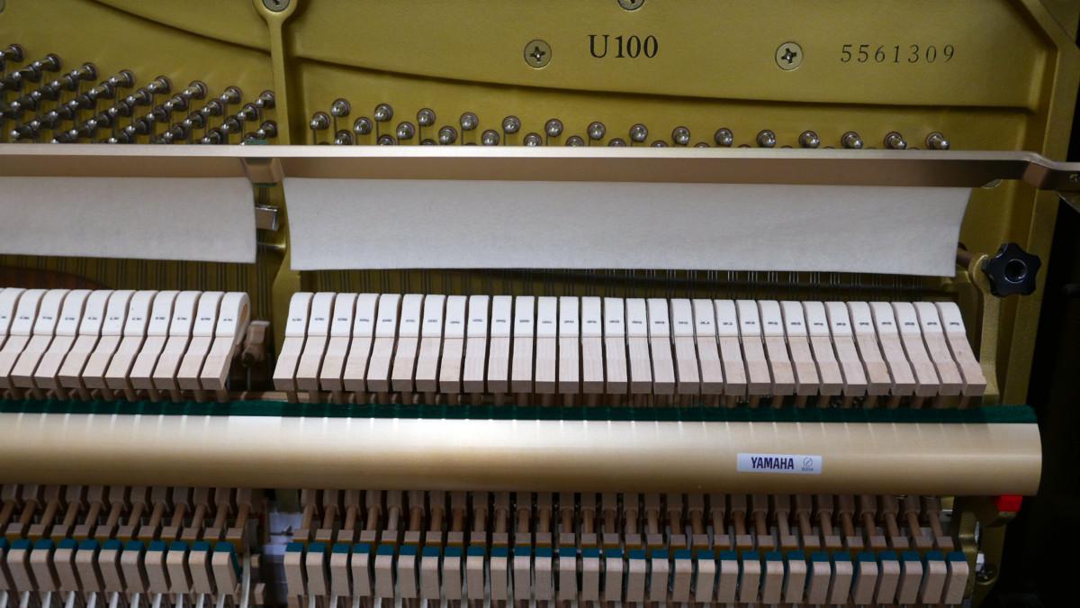 piano vertical Yamaha U100 #5561309 numero de serie modelo arpa mecanica interior