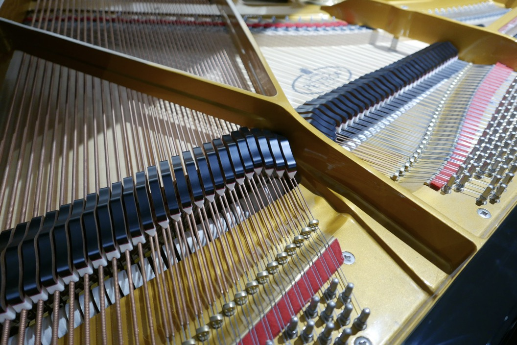 Piano_de_cola_petrof_564865_detalle_bastidor_clavijas_clavijero_apagadores_cuerdas-segunda_mano