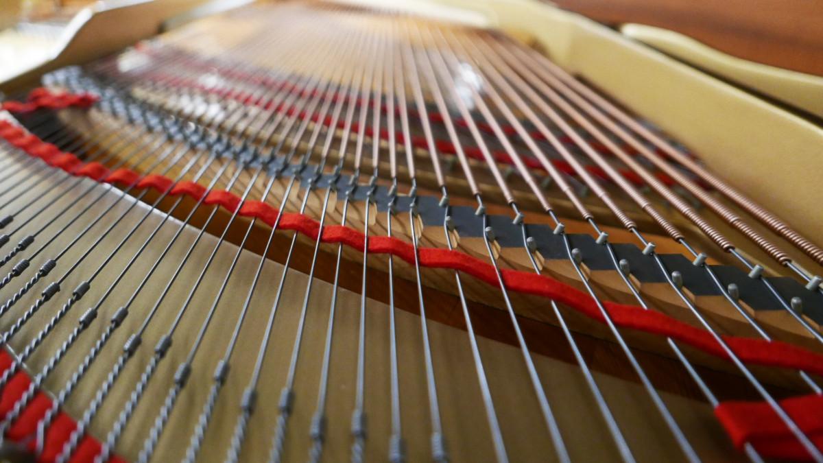 piano de cola Yamaha C3 #4791705 vista trasera interior fieltros cuerdas