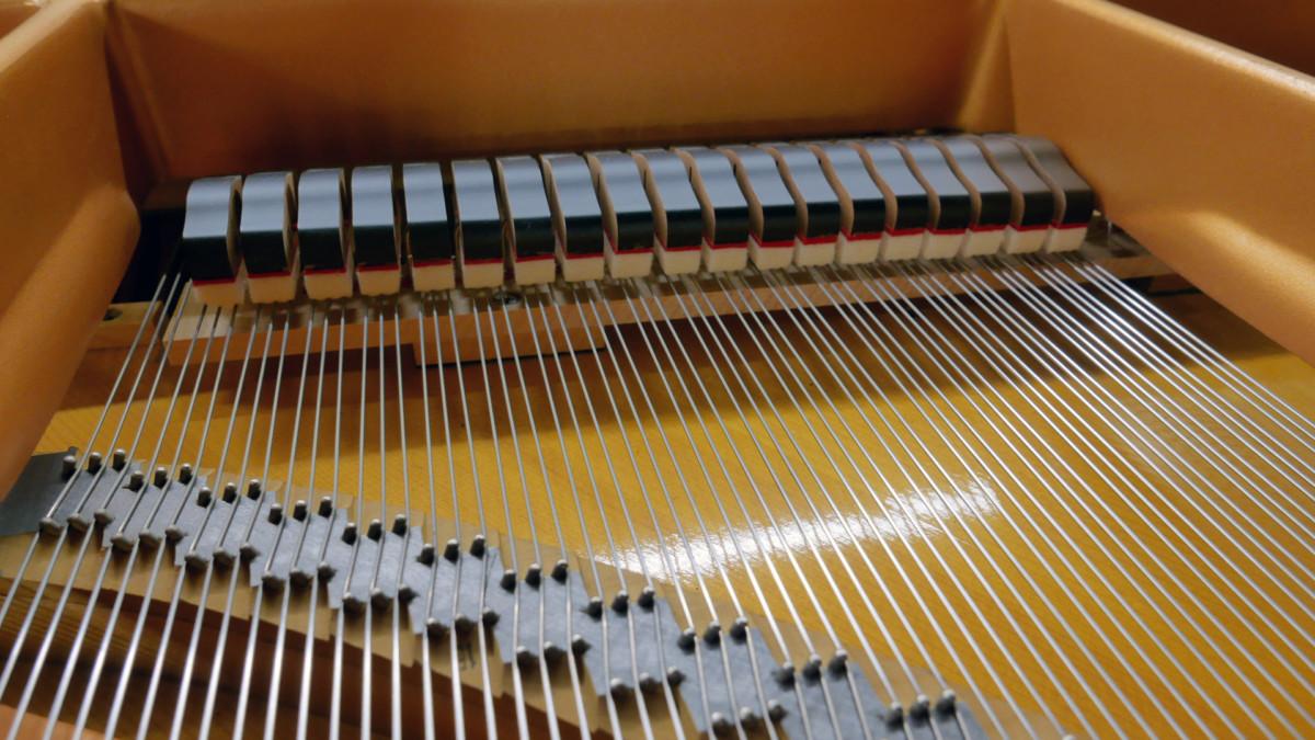 piano de cola Yamaha C7 #5847104 detalle apagadores cuerdas puentes