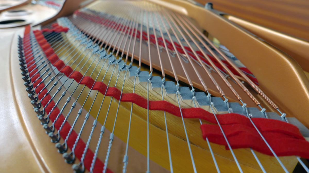 piano de cola Yamaha C7 #5847104 vista trasera detalle fieltros cuerdas