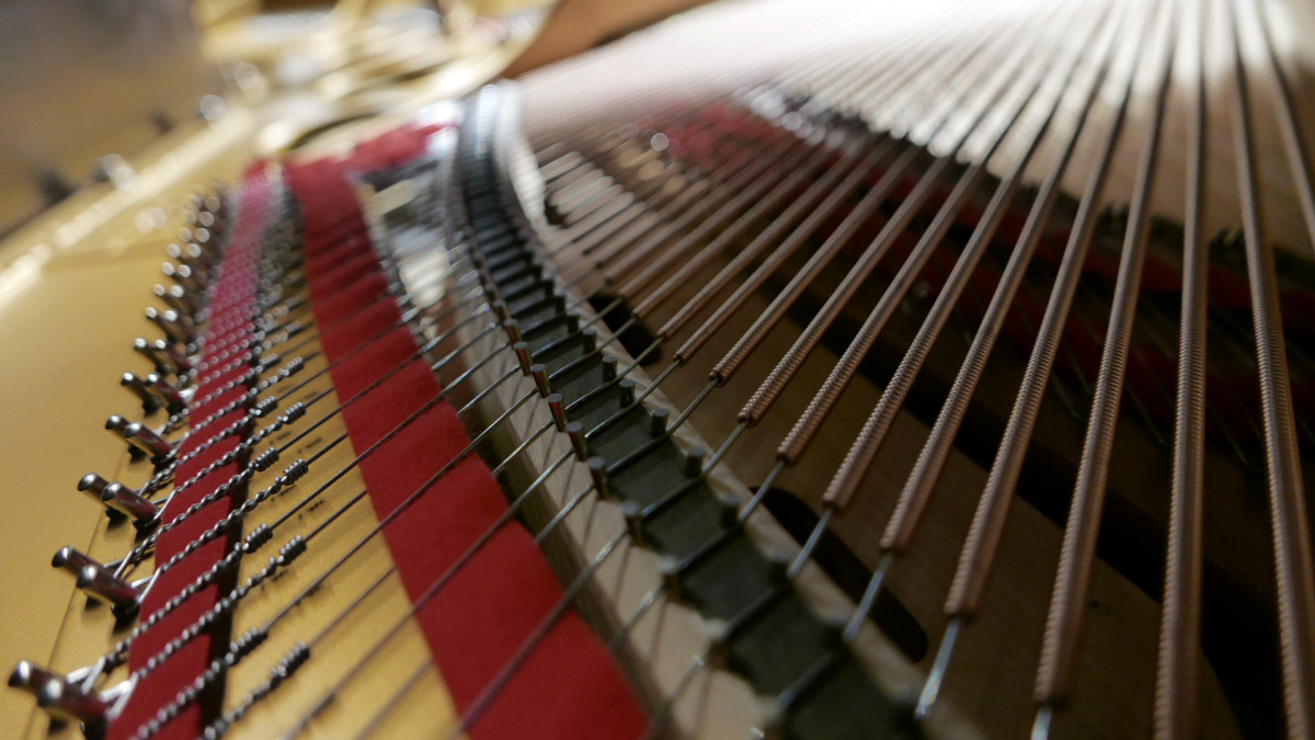 piano de cola Steinway & Sons O180 #109477 detalle fieltros cuerdas