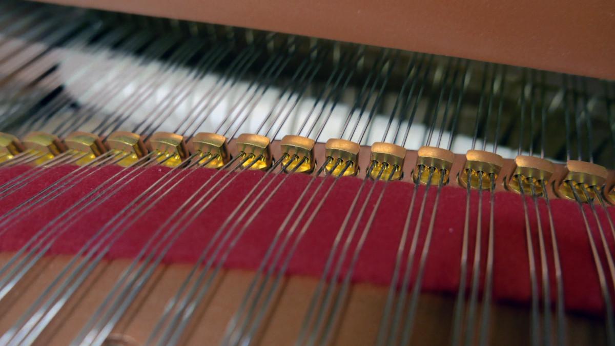piano de cola Yamaha C5X #6515402 detalle agrafes cuerdas fieltros