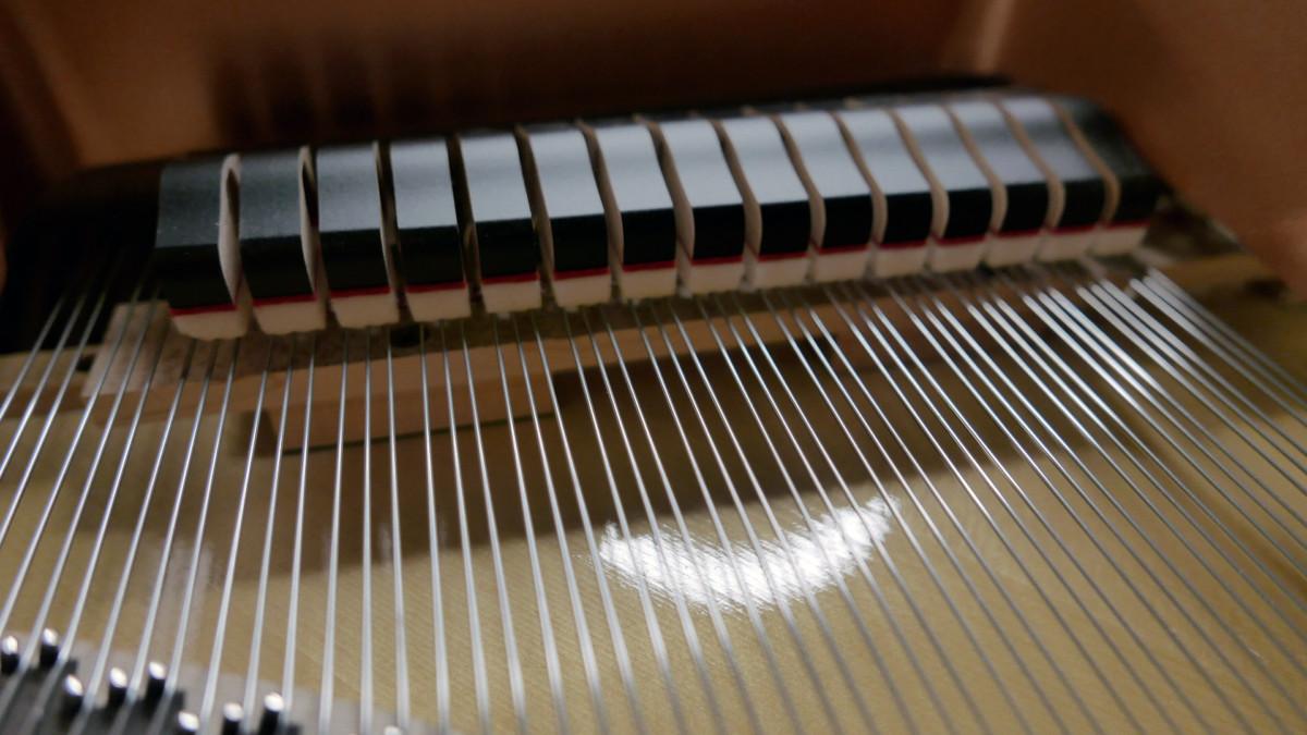 piano de cola Yamaha C5X #6515402 detalle apagadores cuerdas