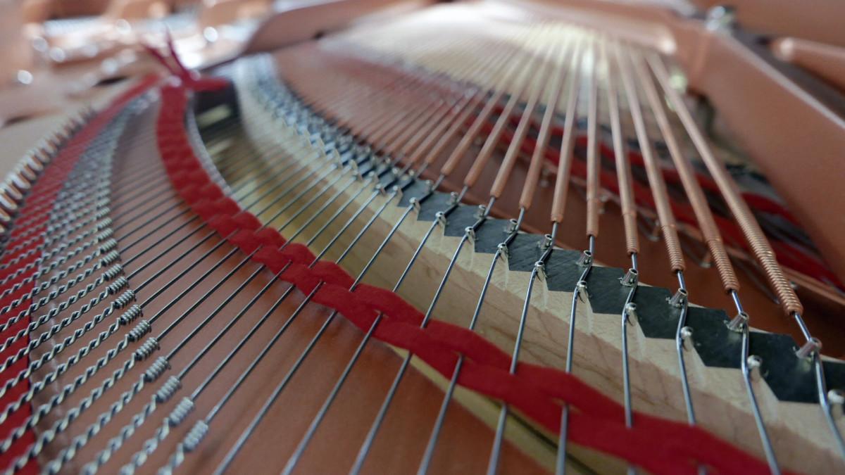 piano de cola Yamaha C5X #6515402 detalle fieltro cuerdas